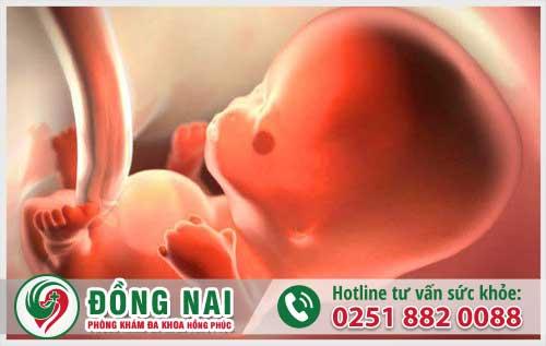 Dấu hiệu thai chết lưu các chị em nên biết để tránh gây nguy hiểm